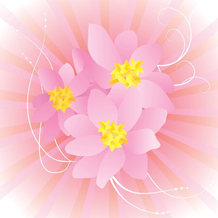 birthday greetings: Colorful background with pink flowers Illustration