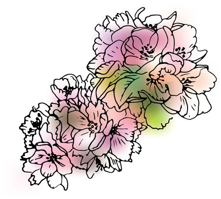 apple blossom line art on blur background