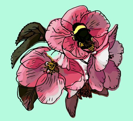 pink apple bloom and bumblebee vector illustration Иллюстрация