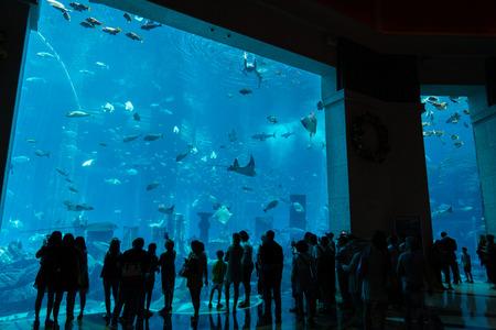 Aquarium in Atlantis, The Palm in Dubai, UAE