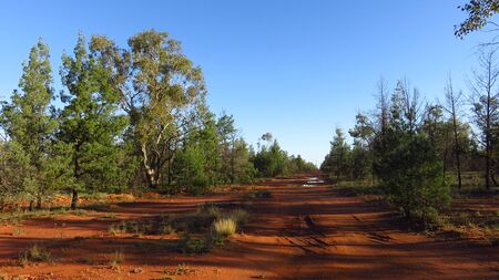Dirt Road in the Australian Outback Stock Photo