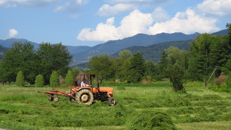 Harvest in Mountainous Countryside Region Stock Photo