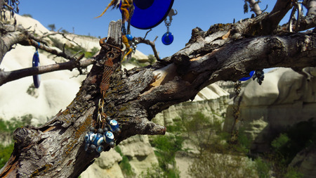 Evil Eye Tree in Pigeon Valley in Cappadocia Stockfoto