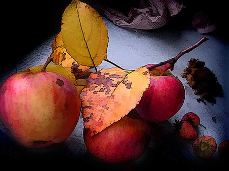 Fruits of ripe apples on a table, gifts of autumn. Stock Photo