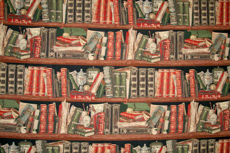 depicts: Cloth, that depicts shelf with the books Stock Photo