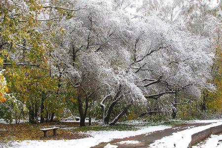 冬の町に来た 写真素材