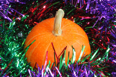 Pumpkin in the tinsel photo