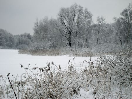 On the shore of the lake, covered with ice         Standard-Bild