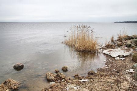 Gulf of Finland, the coast of the sea Stock Photo - 2649386