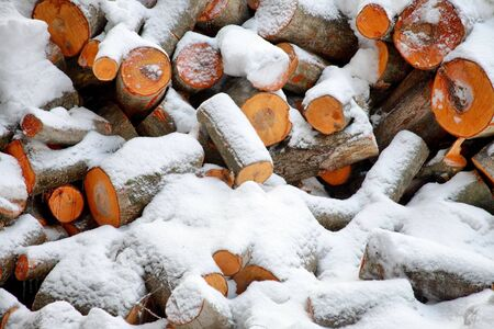 heap snow: Stack of the firewood