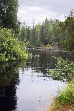 taiga: Of the taiga river