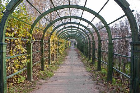 kuskovo: Museum — farmstead Kuskovo. Perspective alley  Stock Photo