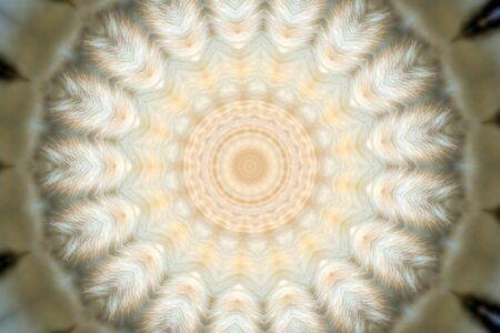 Kaleidoscope Stock Photo - 4324046
