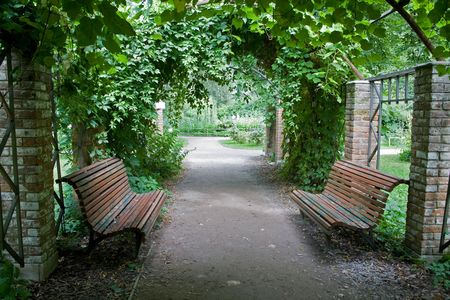 garden bench: An element of landscape design is in the Botanical garden