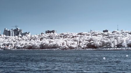 selectivity: Odessa, the coast.  IR Stock Photo