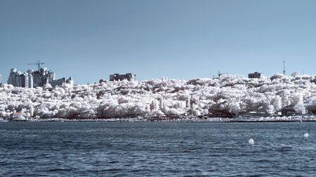 Odessa, the coast.  IR 版權商用圖片