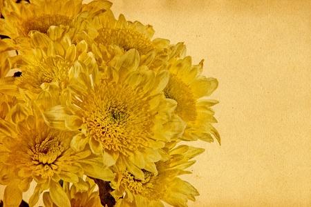 bunched: Crisantemo � ricompattato. Collage. Composizione aperta