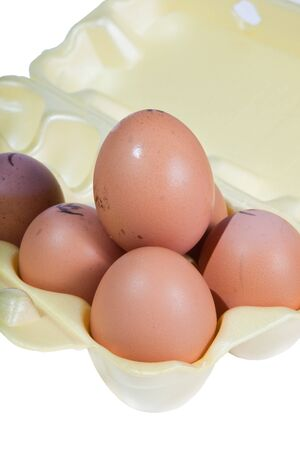 Chicken eggs in packing on a white background  photo