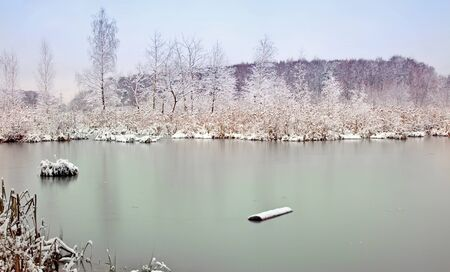 First ice on a forest lake