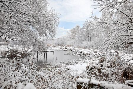 swamped:  Snow-covered shore of the forest lake Stock Photo