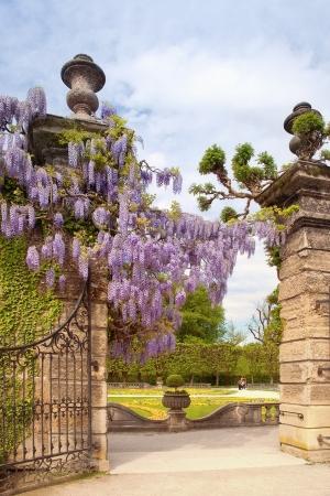 ミラベル宮殿の庭園 写真素材