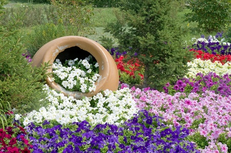 clay pot: Flowerbed