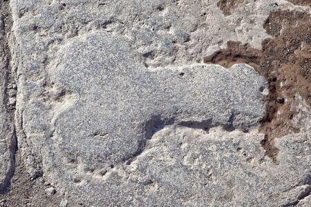 Pompeii  Phallus - a pointer to a public house
