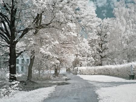 Farmstead Kuskovo  Infrared photo