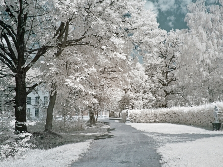 kuskovo: Farmstead Kuskovo  Infrared photo