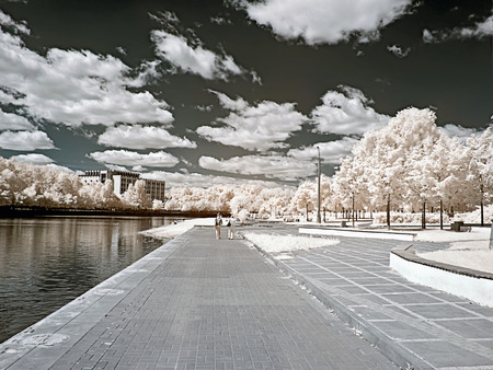 Shore of the Large Grafskogo pond. A photo is in an infrared range