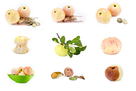 Many apples with money, rotten and edible, with money and on a branch isolated on white background photo