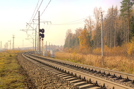 forest railroad: Railroad tracks running along the edge of an autumn forest
