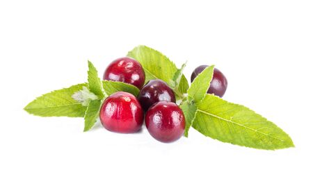 cherry: Berries cherry and mint leaves isolated on white background