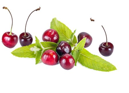gean: Berries cherry and mint leaves isolated on white background