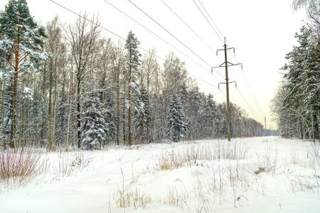 snowbound: Prosek with supports  transmission line and the snow-bound forest Stock Photo