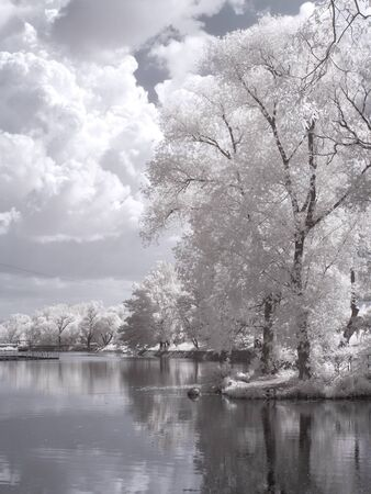 ir: MOSCOW, RUSSIA - May 27.2014: Infrared Photography. Territory of All-Russian Exhibition Center