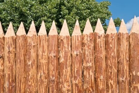 paling: Paling. Protective fence from sharp logs