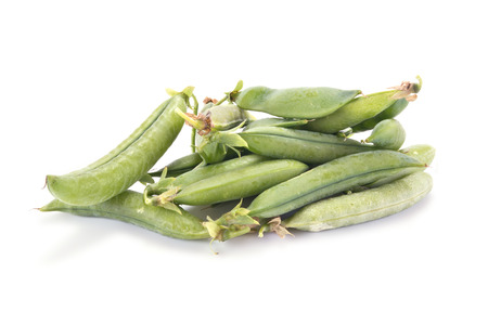 leguminous: Plant peas are isolated on a white background