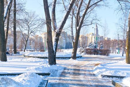 frostily: Snow-covered alley in the park Starostinskaya Sloboda in the center of city Minsk