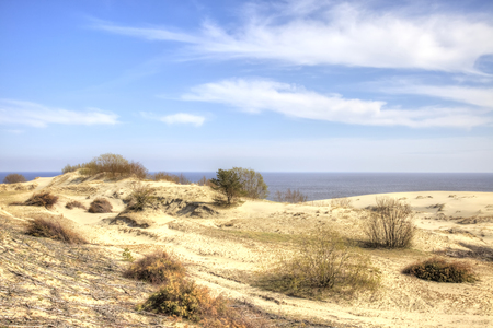 Kaliningrad region. View of the Curonian Spit, from the height of the dune Efa. Monument of nature Banque d'images