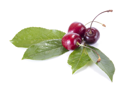 Ripe berry of sweet cherry it is isolated on a white background Stock Photo