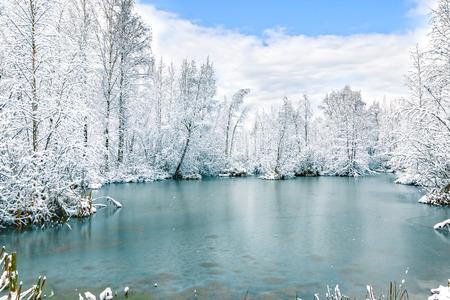 Il primo ghiaccio sul lago della foresta all'inizio dell'inverno