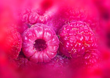 Branches of bush raspberry with ripe berries. Background bokeh and color blur