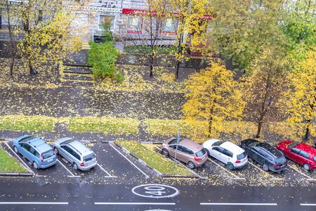 MOSCOW, RUSSIA - October 03.2019: Autumn. Yellow leaves on the sidewalk
