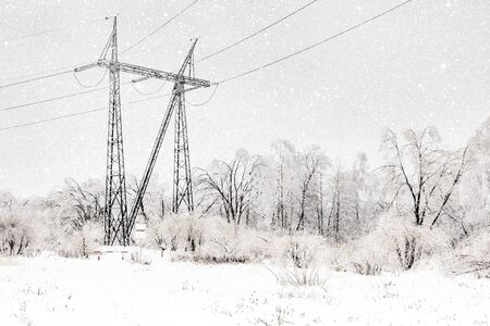 Power transmission line support at a forest edge in winter