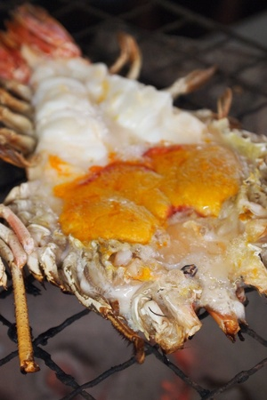 Grilled big freshwater prawn from Ayuthaya, Thailand