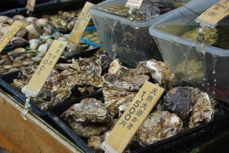 Fresh Japanese seashell in front of the restaurant