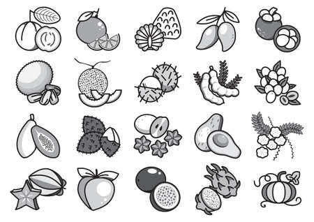 Fruit solid icons, Twenty grey scale fruit solid icons, Vector illustration, Cartoon solid icons, Monotone fruit icons Illustration