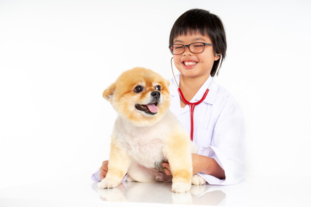 Isolated portrait of young female veterinarian with eyeglasses checking up Pomeranian dog in veterinary clinic. Studio shot of girl and puppy on white background Archivio Fotografico - 123720489