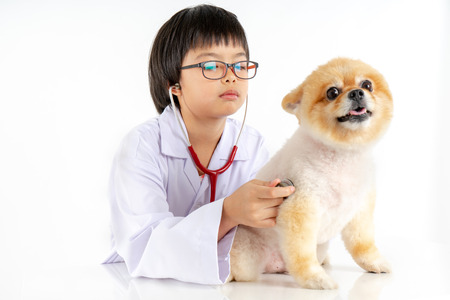 Isolated portrait of young female veterinarian with eyeglasses checking up Pomeranian dog in veterinary clinic. Studio shot of girl and puppy on white background Archivio Fotografico - 123720492
